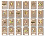 Winnie The Pooh 1st Year Milestone Cards • New Baby Gift Milestone Cards Milestone Cards • Pooh Bear Baby Memory Cards • Unisex GIRL