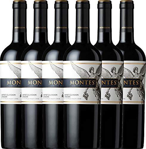 VINELLO 6er Weinpaket Rotwein - Limited Selection Cabernet Sauvignon Carmenère 2018 - Montes mit Weinausgießer | trockener Rotwein | chilenischer Wein aus Valle Central | 6 x 0,75 Liter
