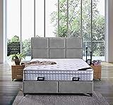 Cama canapé Madrid con canapé de tela, cama de hotel doble, color gris, tamaño 140 x 200 cm