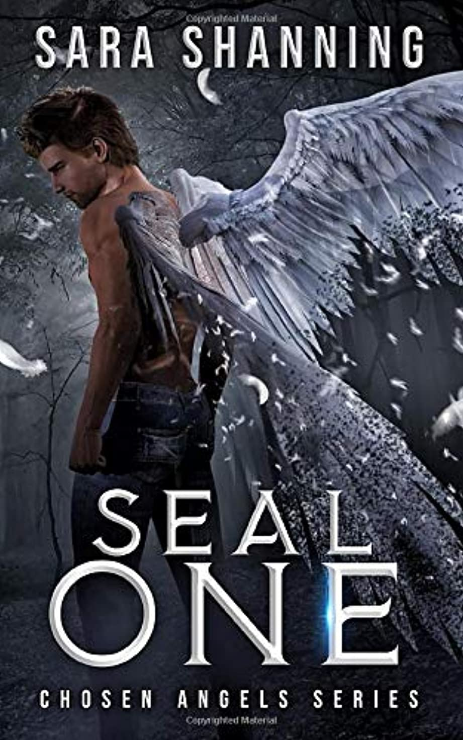 路地原告の頭の上Seal One: Chosen Angel Series (Chosen Angels Series)