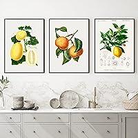 3枚レモン洋ナシメロンポスターヴィンテージフルーツイラスト壁アートパネル版画北欧ミニマリストキャンバス絵画インテリアレトロ写真オフィスリビング部屋装飾の画30x40cmx3フレームなし