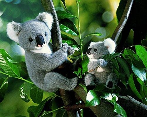 Kösener 4180 - Koala