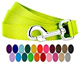 Country Brook Petz - Nylon Dog Leash - Strong, Durable, Traditional Style Leash with Easy to Use Snap - 25+ Colors (3/4 Inch Wide, 6 Foot, Hot Yellow)