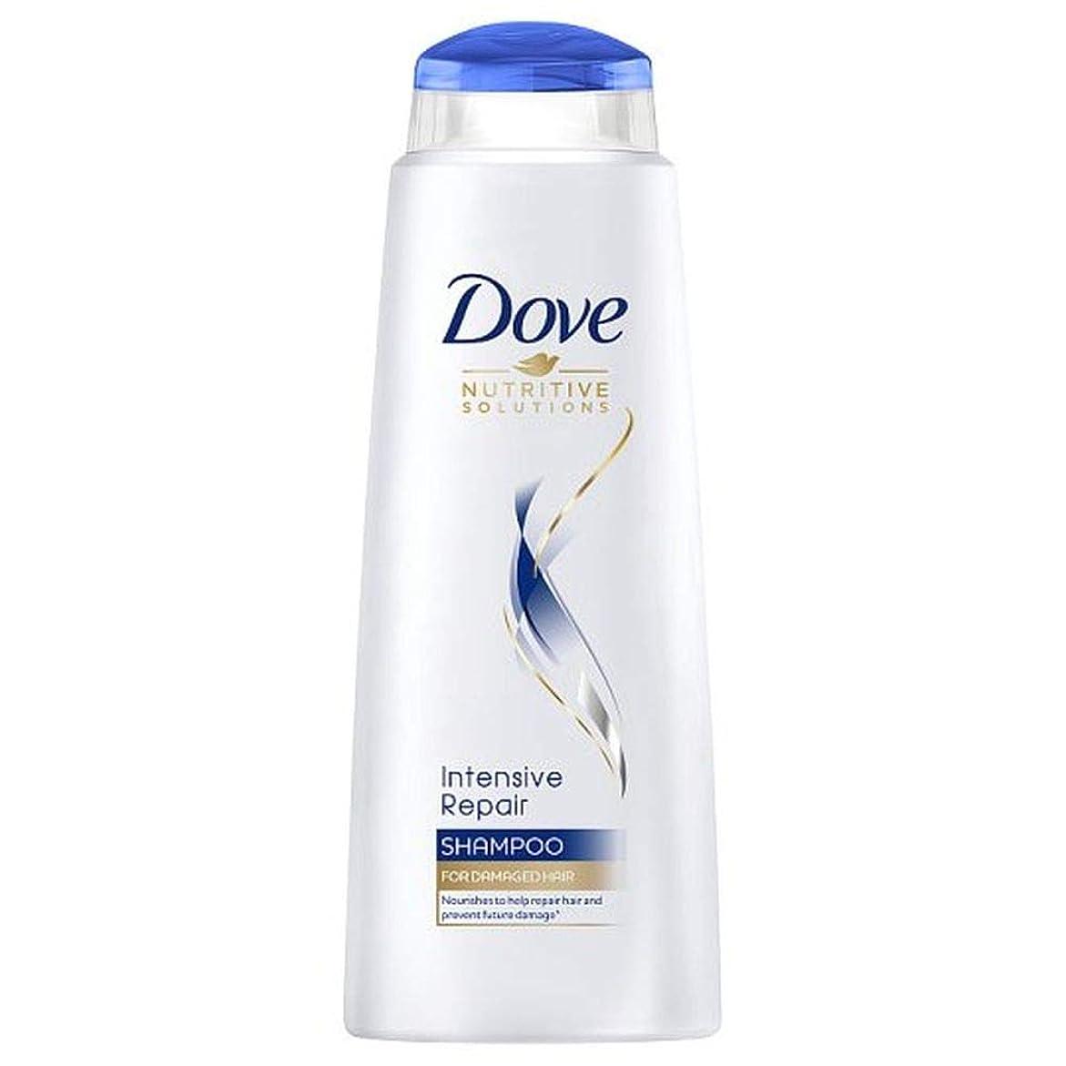 窓結婚原点[Dove ] 鳩の集中リペアシャンプー400ミリリットル - Dove Intensive Repair Shampoo 400Ml [並行輸入品]