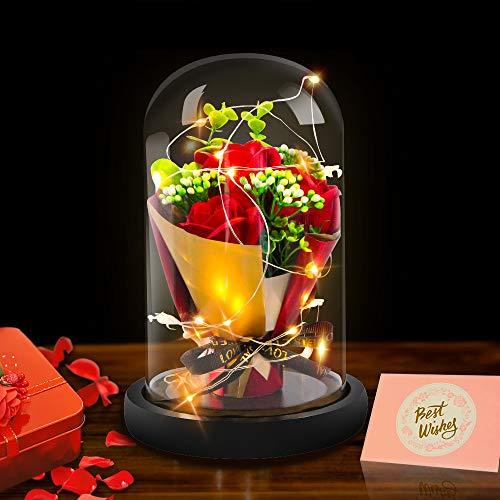 BOPUROY Rosa Bella e la Bestia, Rose Incantate con Luci LED Regali Magici Decorazioni per Festa della Mamma della s.Valentino Anniversario di Matrimonio Vacanza
