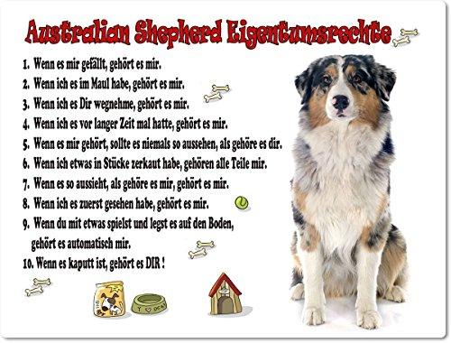 Merchandise for Fans Blechschild/Warnschild/Türschild - Aluminium - 20x30cm Eigentumsrechte Motiv: Australian Shepherd (01)
