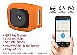 Motorola Scout Traks – GPS Tracker und Aktivitätstracker für Hunde und Katzen – Inkl. 1 Jahr Abo, schwarz - 14
