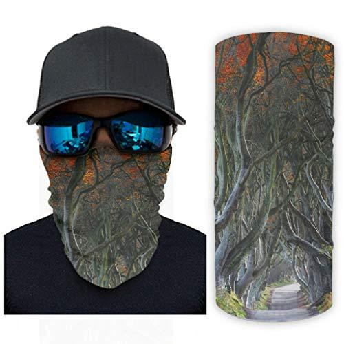 CCMugshop Bandanas para la cara Morning Road Maple Forest Print Face Mask Headband Reusable White One Size