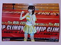 AKB48 2017 829 達家真姫宝 豆腐プロレスThe REAL 2017 WIP CLIMAX 生写真 コレクション