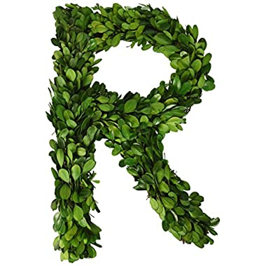 Modern Home 12  Real Preserved Boxwood Monogram Wreath Letters - R