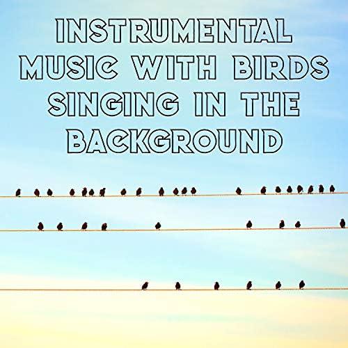 Bird Song Group