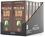 Pellini Caffè Bio Arabica 100%, Capsule Compatibili Nespresso, COMPOSTABILI e Autoprotette, 12 Astucci da 10 Caspsule, Totale 120 Capsule