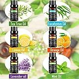 Immagine 2 olio essenziale set 100 puri