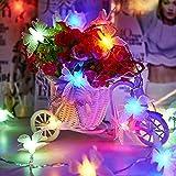 FENGZE Schmetterling Batterie Lichterketten Multi Farben Led Lampe Outdoor Indoor Dekorative Beleuchtung Für Garten Party Weihnachten Fairy Light Mehrfarbig