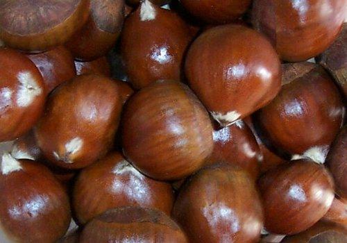 Chestnuts, Fresh, approx. 1lb