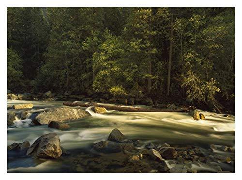 Obras de Arte Italia Río Merced que fluye por el suelo del valle, Parque Nacional de Yosemite, California-Arte de papel 34'x26'