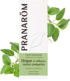 Pranarôm Essential Oil Oregano with Compact Inflorescences (Origanum compactum) 10 ml