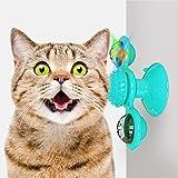 【Design del mulino a vento rotante】 Quando questo giocattolo per gatti con mulino a vento viene toccato delicatamente, ruoterà liberamente, attirando il tuo gatto a giocare e mordere. Il gatto che suona il mulino a vento può ridurre l'ansia e aumenta...