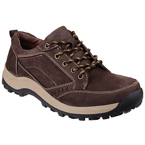 Cotswold Nailsworth Mens Lace Shoe Brown - 46