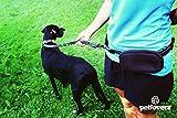 Hunde Joggingleine/Laufleine mit verstellbarem Hüftgurt | Leine zum handfreien Laufen/Fahrrad fahren | elastische Bungee Leine mit Reflektoren für Hunde bis 60kg | zusätzliche Tasche für Handy und Schlüssel etc. | Nylon | schwarz | super zum Laufen, Joggen, Wandern und Gassi gehen – PETLOVERZ® - 7