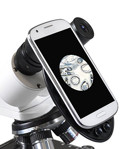 Bresser biologisches Durchlicht-Mikroskop, Erudit Basic Bino 40x-400x, Grob- und Feinfokussierung, sowie Kreuztisch (koaxial), LED (Batterie oder Akku), Abbe-Kondensor, Smartphonehalter und Koffer