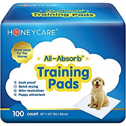 Buy All-Absorb Training Pads 22-inch By 23-inch