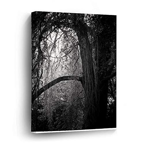 Moody Willow Tree Black and White Landscape Photo Canvas Picture Painting Artwork Wall Art Poto Framed Canvas Prints for Bedroom Living Room Home Decoration, Ready to Hanging 16'x24'