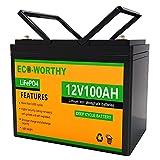 ECO-WORTHY 12V 100Ah Batería recargable de fosfato de litio y hierro LiFePO4 con más de 3000 veces de ciclo profundo y protección BMS para kit de panel solar, scooter, RV, marino, hogar