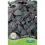 Germisem Purple Opal Semillas de Albahaca 2 g, EC1103
