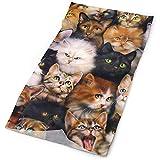 Diadema divertida de tela para colorear Cute Me Cat - Sombreros deportivos de microfibra - Funciona como bufanda/mascarilla/polaina de cuello/pañuelo/pasamontañas
