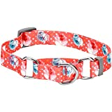 Blueberry Pet Spring Scent Inspired Rose Print Safety Training Martingale Dog Collar, Brink Pink, X-Small, Heavy Duty Adjustable Collars for Dogs