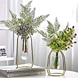 MARATTI 2 Pcs(S+L) Flower Vases with Iron Art Frame, Metal Geometric Flower Vase, Clear Vase Decorative for Home Office Wedding Holiday Party Celebrate (Gold/Rose Gold) (Gold)