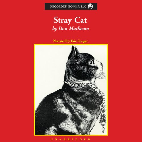 Stray Cat audiobook cover art