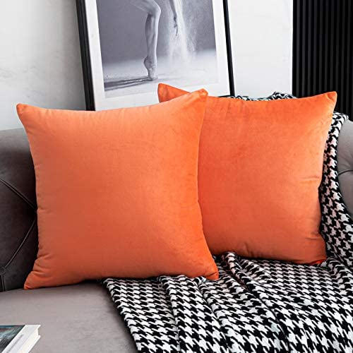 WLNUI Set of 2 Soft Velvet Coral Pillow Covers 18x18 Inch Square Decorative Throw Pillow Covers product image