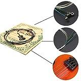 Immagine 2 corde per 4 violino g