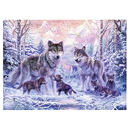 DIOPN 5D DIY Diamond Painting Diamant borduurwerk Wolf DIY diamant mozaïek dieren foto's van strass Home Decor, ronde diamant 30 * 40) 40 * 50