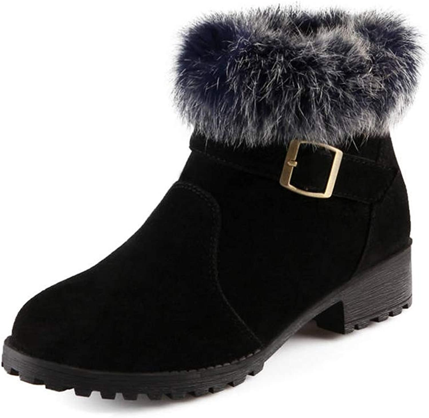 GIY Women's Winter Round Toe Snow Boots Comfortable Warm Fur Lined Casual Suede Low Heels Zipper Ankle Boots