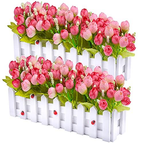 lidl kwiaty w szkle
