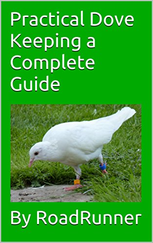 Practical Dove Keeping a Complete Guide (English Edition)