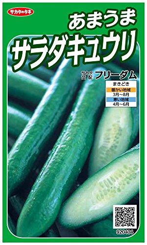 サカタのタネ 実咲野菜0404 あまうまサラダキュウリ フリーダム 00920404