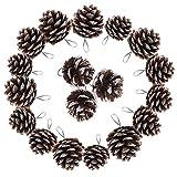TRIXES Decorazioni dell'albero di Natale - 18PC Pigne Appese - Ghirlanda - Punta di Neve - Corona di Natale Che Fa Rifornimenti - Bagattelle di Natale