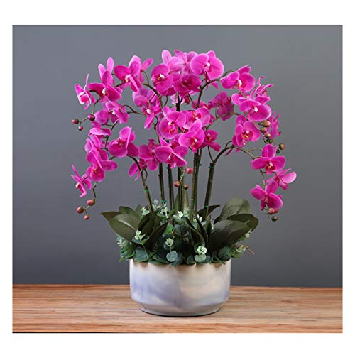 Artificial Flora Orchids Flowers Arrangement - Real Touch Silk Flowers Artificial Butterfly Orchids 23.6' Height Faux Phalaenopsis Flowers Bonsai for Home/ Office/ Parlor/ Wedding Party Artificial Flo