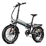 Winice Bici Elettrica Pieghevole Donna Uomo 20 * 4.0 Pollici Fat Bike Bicicletta Elettrica 500W, 48V...