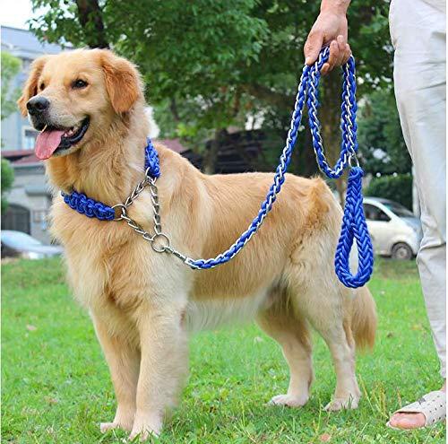 MK Hundeleine und Halsband/Pet Training Bleihalsband/Anti-Pull-Anti-Biss Hundeleine und Halsband (L(450mm-550mm), Blau)