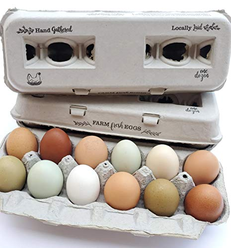 250 Egg Cartons – Vintage Design with Blank Center for Your Custom Stamp at a Cheap Bulk Price, 100% Recycled Biodegradable Cardboard Cartons, Sturdy & Reusable, Holds Small to XL Chicken Eggs