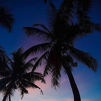 Encanto Tropical