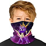 SP-yro Dragon Seamless Face Cover Mouth Mask Scarf Reusable Bandanas Neck Gaiter for Kids for Dust Sun UV Quick Dry