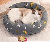 Cómoda Cama para Perros y Gatos,Colchón Universal para Mascotas de Cuatro Estaciones Nido para Perros-A + Almohada + Mat_S #,Cama para Perros con Felpa Suave