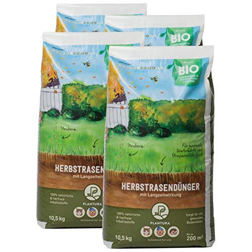 Plantura Bio Herbstrasendünger mit Langzeit-Wirkung, 42 kg, für maximale Winterhärte, idealer Dünger für den Rasen im Herbst, unbedenklich für Hund, Haus- & Gartentiere, Rasendünger, Langzeitdünger