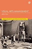 Visual Arts Management, 2nd Edition (Discovering the Creative Industries)